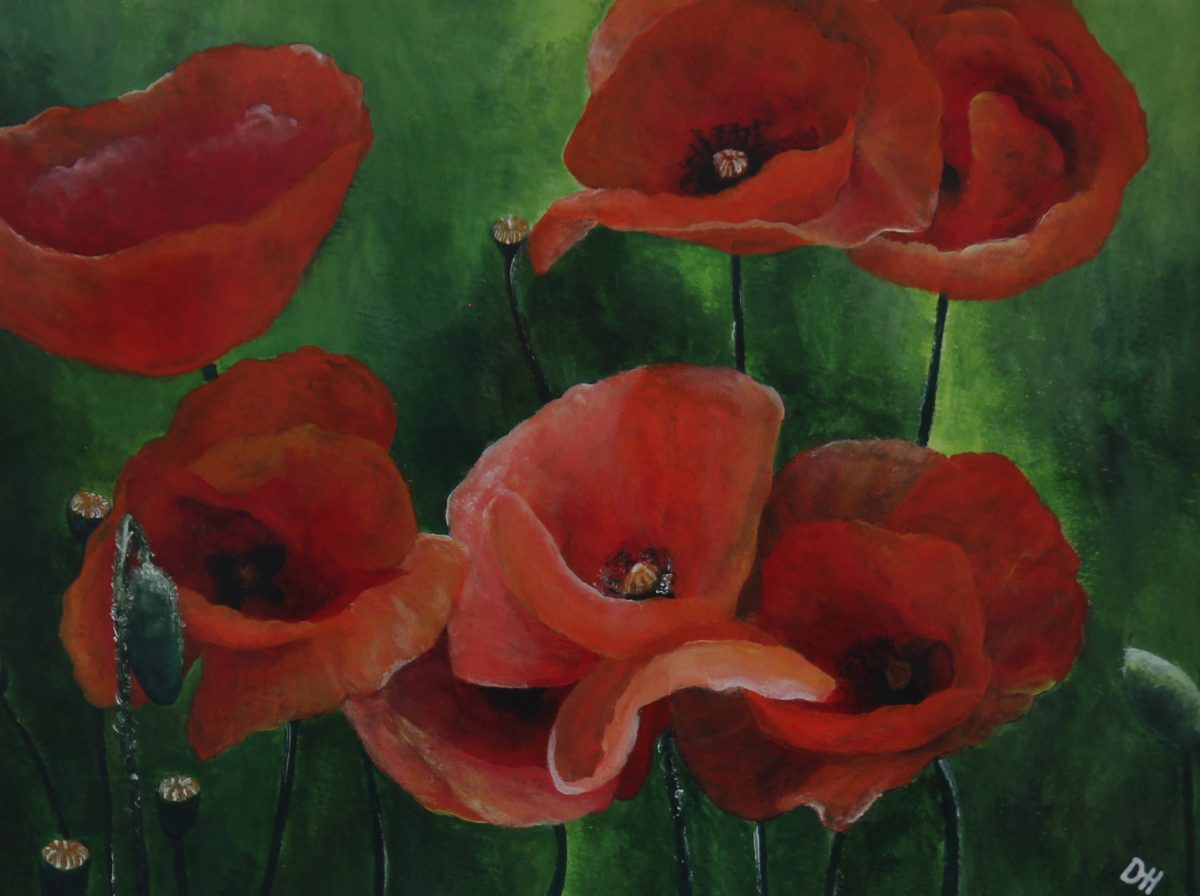 Poppies Part One (1)