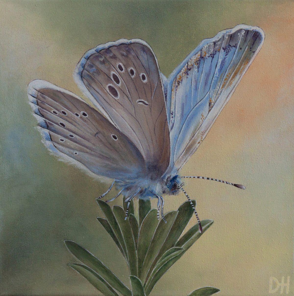 Drieluik 'Butterflies' (2)