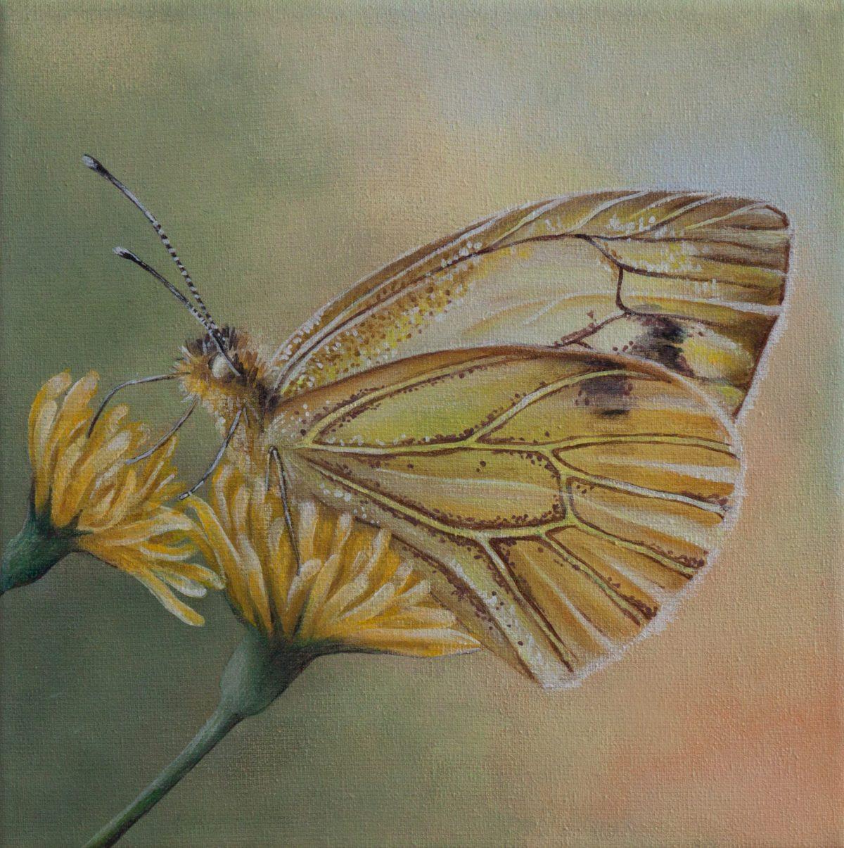 Drieluik 'Butterflies' (3)